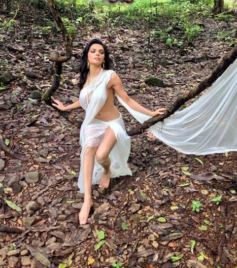 Sherlyn Chopra: Nudity Is For Goddesses | Movies & Entertainment News | Scoop.it