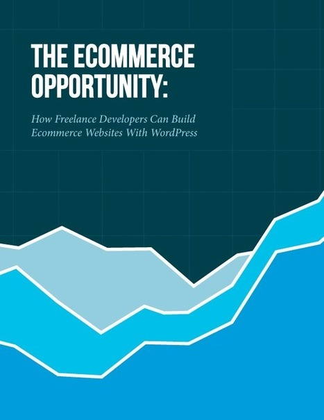 The Ecommerce Opportunity | Técnicas de Growth Hacking: | Scoop.it