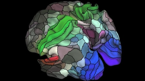 Brain map carves cortex into twice as many areas - BBC News | PLASTICITIES  « Between matter and form, between experience and consciousness, the active plasticity of the world » | Scoop.it