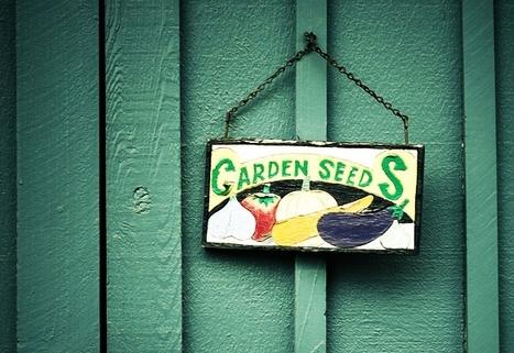 Du sol à la graine | Economie Responsable et Consommation Collaborative | Scoop.it