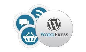 WordPress Customization service | Hire PHP Programmer India | Scoop.it