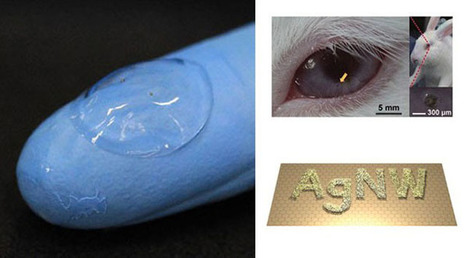 Do you know bigger technology became a minor N minor like contact lens with integrated display? | technology | Scoop.it