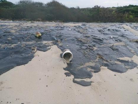 Congo : Marée noire sur 400 km de côtes à Pointe-Noire | Toxique, soyons vigilant ! | Scoop.it