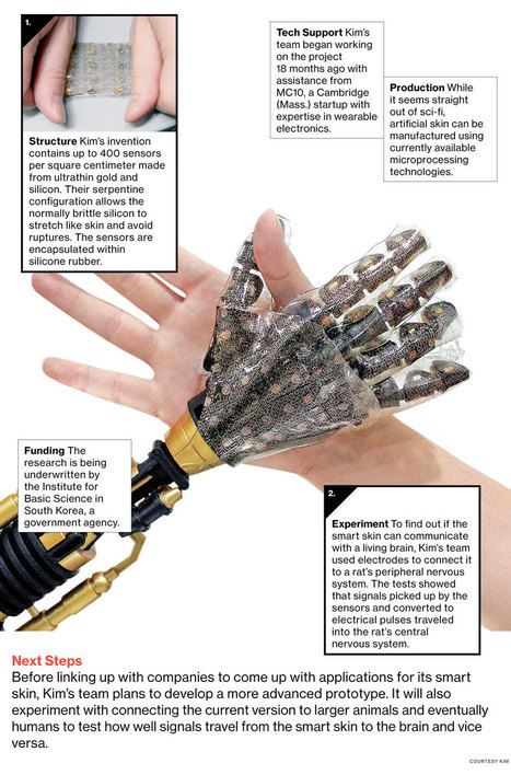 Artificial Skin Can Feel Pressure and Heat | 21st Century Innovative Technologies and Developments as also discoveries, curiosity ( insolite)... | Scoop.it
