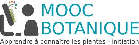 MOOC Botanique de TelaBotanica | Actualités de l'environnement | Scoop.it