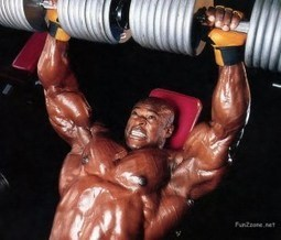 A formula to Grow Muscles | Nitric Oxide | Scoop.it