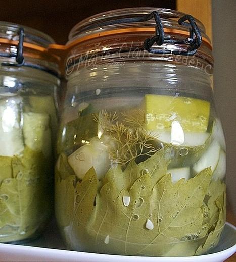Concombres lacto-fermentés «malossols» - Ni cru ni cuit, le blog des aliments fermentés | Webnutrition Online | Scoop.it