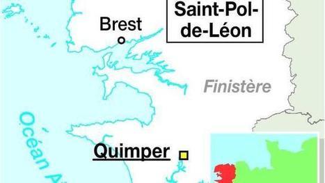 Bretagne : des pompiers sauvent la vie d'un beagle   Beagle   Scoop.it