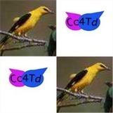 Cc4Td- Content Curation For Tourist destination | Cc4Td | Scoop.it