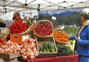 Challenging Conventional Farming: One Farmer's Take On The Stanford Organic Food Study - Organic Connections   Searching for Safe Foods   Scoop.it