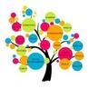Seo Services Company India