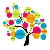 Seo Services Company India | Seo Services Company India | Scoop.it
