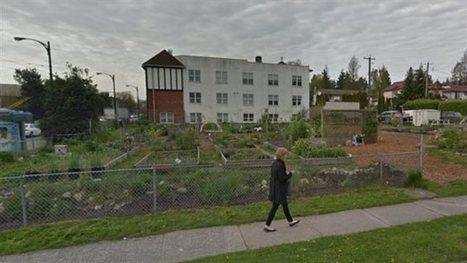 Agriculture en ville : les potagers urbains sont à risque de pollution quand ils ne sont pas sur les toits | Agriculture urbaine et rooftop | Scoop.it