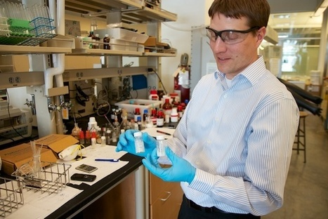 Stanley earns NSF Career Award for success in lab, classroom ... | NSF and Broader Impacts | Scoop.it