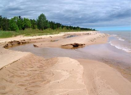 Limited food may be significantly changing Great Lakes ecosystems | Complex systems | Scoop.it