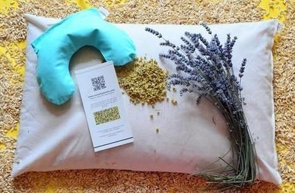 Cuscini in pula: le meravigliose proprietà svelate dall'artigiana che li realizza - Eticamente.net | Ecoartigianato | Scoop.it