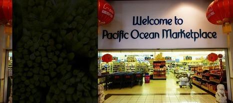 Pacific Ocean Marketplace | Colorado Fun Spots (Denver Metro and West) | Scoop.it