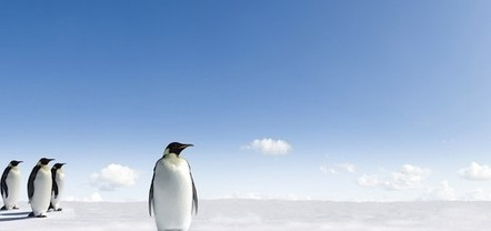 Let's go exploring: Google Maps gets 360-degree panoramic images of Antarctica   Digital-News on Scoop.it today   Scoop.it