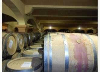 Journée découverte autour de Montpellier - Séjours viticoles  - Mon Vigneron   Tourisme viticole en France   Scoop.it