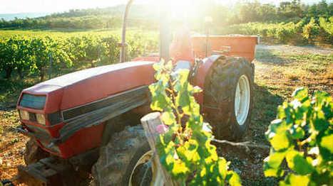 Des domaines viticoles varois se font payer pour recevoir des gravats | Le vin quotidien | Scoop.it