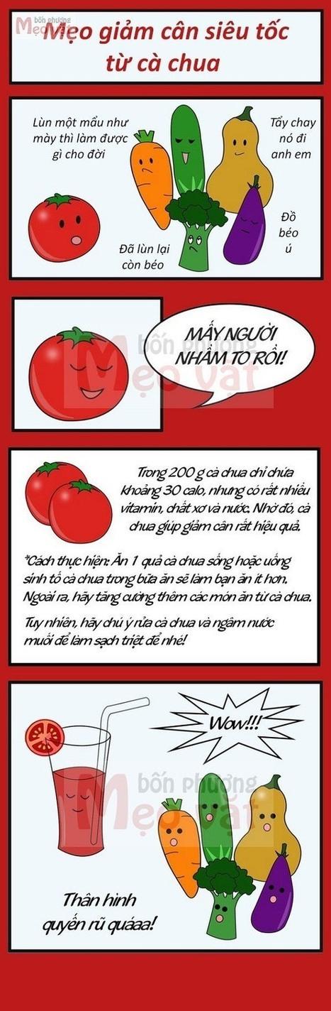 Giảm cân nhờ cà chua, mẹo giảm cân siêu tốc - Tạp chí nội trợ   Nội trợ   Scoop.it