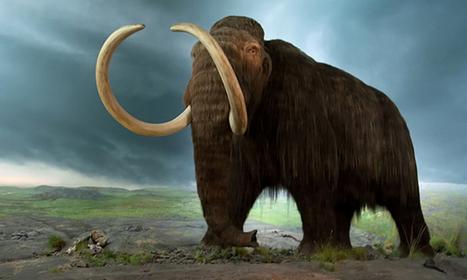 Ancient DNA reveals Ice Age diet (ScienceAlert) | Ancient Archeology | Scoop.it