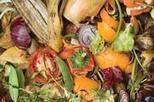 Tamar Energy and Peel Environmental plan five anaerobic digestion plants | Anaerobic Digestion Industry News | Scoop.it