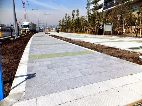 Tokyo Olympic Cycling Infrastructure. Is that it?   Tokyo By Bike - Cycling News & Information from Japan   Tokyo By Bike   Scoop.it