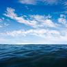 Sea Chronicles