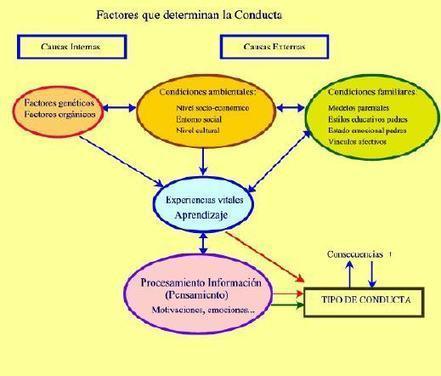 Psicodiagnosis: Psicología infantil y juvenil | Actual Education | Scoop.it