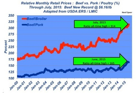 Beef prices at new all-time highs | Grain du Coteau : News ( corn maize ethanol DDG soybean soymeal wheat livestock beef pigs canadian dollar) | Scoop.it