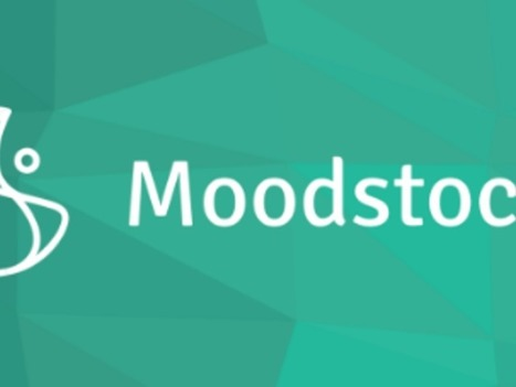 Google buys French startup Moodstocks to boost machine learning muscle | Social Foraging | Scoop.it