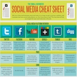 Social Media Cheat Sheet For Small Bussinesses | Nonprofit Technology and Communication | Scoop.it