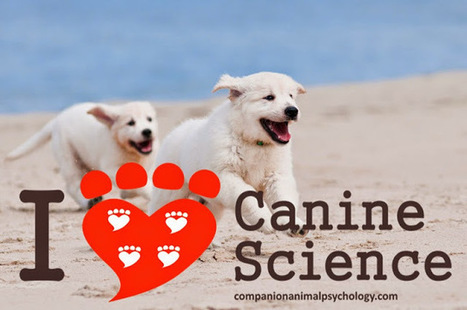 Companion Animal Psychology: 6 Reasons to Love Canine Science | Animals R Us | Scoop.it