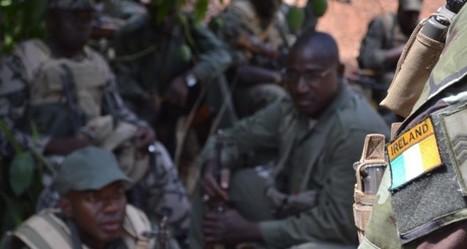 Mali : Le bataillon Waraba débute une nouvelle formation | Veille Défense Forces Armées | Scoop.it