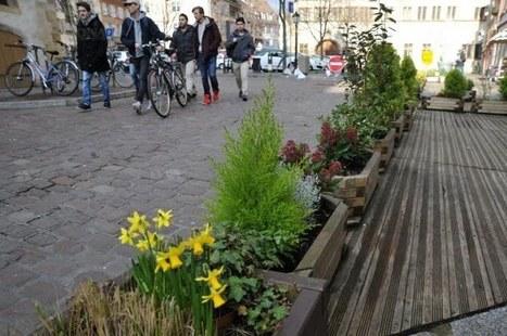 A Colmar, la mairie bride la créativité florale des commerçants | Nature en Ville | Scoop.it