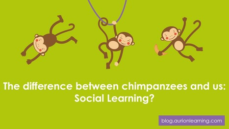 The difference between chimpanzees and us: Social Learning? | Aurion Learning | Aurion E-learning | Scoop.it