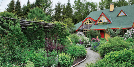 30 Fresh New Ways to Landscape Your Yard   Landscape Creative Inspiration   Scoop.it