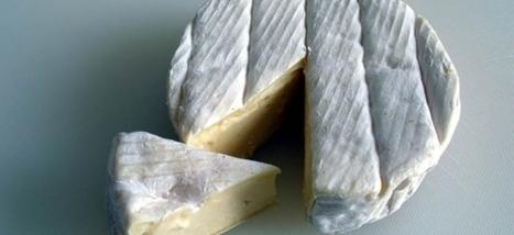 Rouen : le fromage AOP star des concerts de la Région ? | The Voice of Cheese | Scoop.it