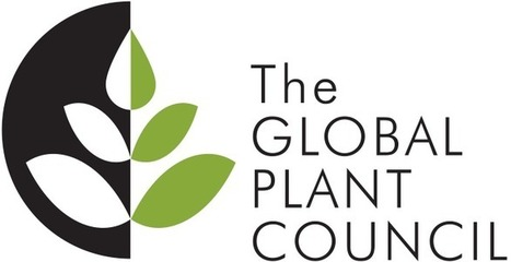 Transparency is key in the decision to label GM ingredients | Global Plant Council | Plant science | Scoop.it
