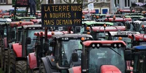La crise agricole résumée en trois questions - Europe 1   Le Fil @gricole   Scoop.it