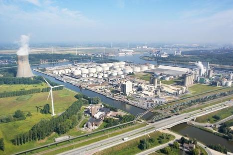 Biomass: Largest plant projected in Belgium (215MW) - Bioenergy Crops   Bioenergy Crops   Scoop.it