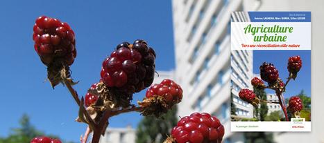 Agriculture urbaine IDF | Agriculture urbaine et rooftop | Scoop.it