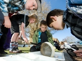 Learning Through Action - Education for sustainability - Christchurch City Council | Environmental education | Scoop.it