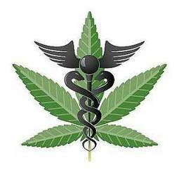Government Sponsored Study Concludes DEA Must Reclassify Marijuana   marijuanas   Scoop.it