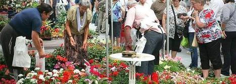 Entre plantas, flores y artesanos - Diario Vasco | artesaniaflorae | Scoop.it