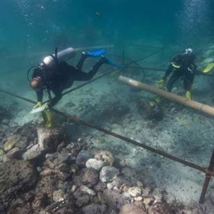#Scuba Divers uncover 500-year-old Vasco da Gama fleet treasure | Scuba Diving News | Scoop.it