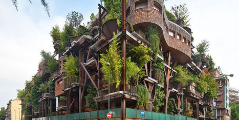 Italy's Epic Treehouse Apartments Fulfill Everyone's Childhood Dreams | The Integral Landscape Café | Scoop.it