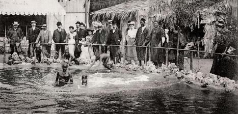 À l'époque des zoos humains | Revue de tweets | Scoop.it