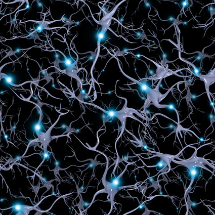 Neuroscience | Bounded Rationality and Beyond | Scoop.it